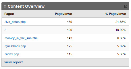 "An example of a Google Analytics report showing two lines of data for the homepage - ""/"" and ""index.php"""